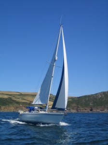 shearwater off Salcombe
